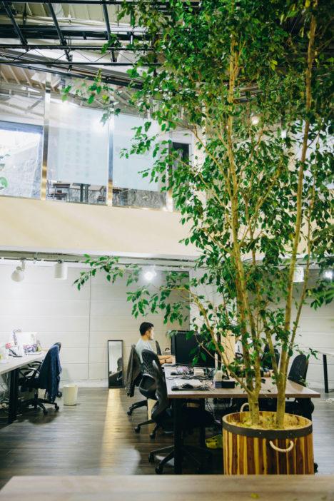 サムネイル:田中亮平+土屋匡生+林口洋平による、恵比寿のITベンチャーのオフィス「Wano head office」